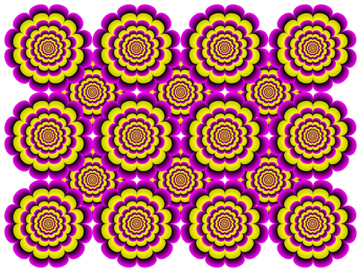 bloem illusie
